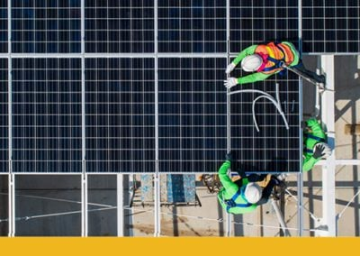 How can asset stewardship bring about a low carbon economy?