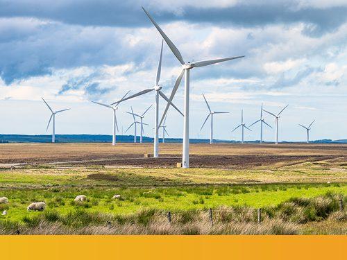 Scottish Clean Energy Technology Showcase