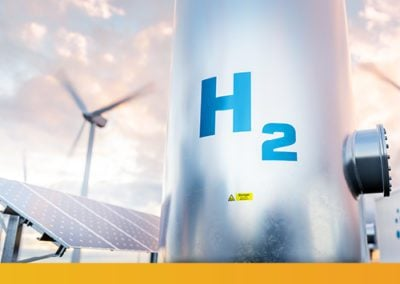 Green Hydrogen in Developing Economies