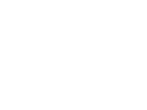 womens energy council logo